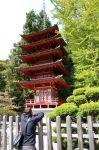 JapanGarden5