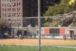 BaseballInTown